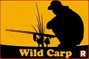 Бойлы Wild Carp